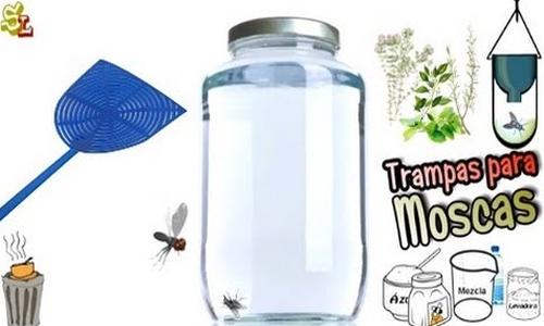 Trucos caseros para eliminar las moscas en tu casa tu - Remedio contra las moscas ...