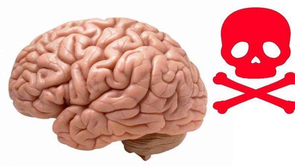 habitos para el cerebro